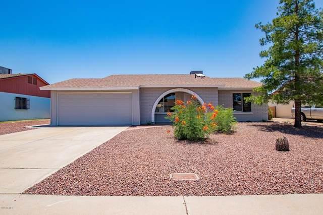 3807 W Libby Street, Glendale, AZ 85308 (MLS #6084073) :: Revelation Real Estate