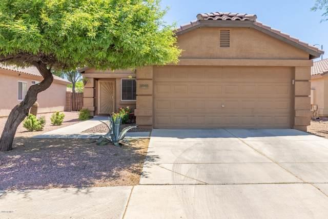 12505 N El Frio Street, El Mirage, AZ 85335 (MLS #6084110) :: Yost Realty Group at RE/MAX Casa Grande