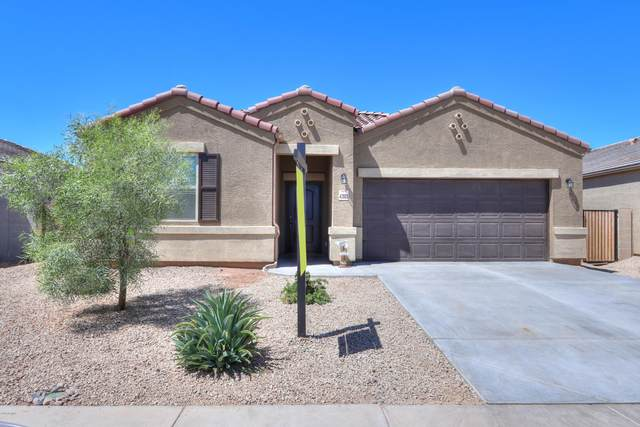 42003 W Rosa Drive, Maricopa, AZ 85138 (MLS #6084122) :: The W Group