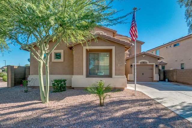 25810 W Watkins Street, Buckeye, AZ 85326 (MLS #6084126) :: Brett Tanner Home Selling Team