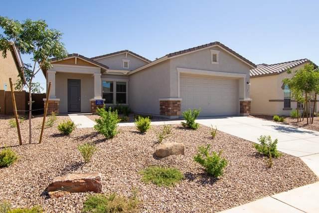 471 W Glacier Bay Drive, San Tan Valley, AZ 85140 (MLS #6084174) :: Arizona Home Group