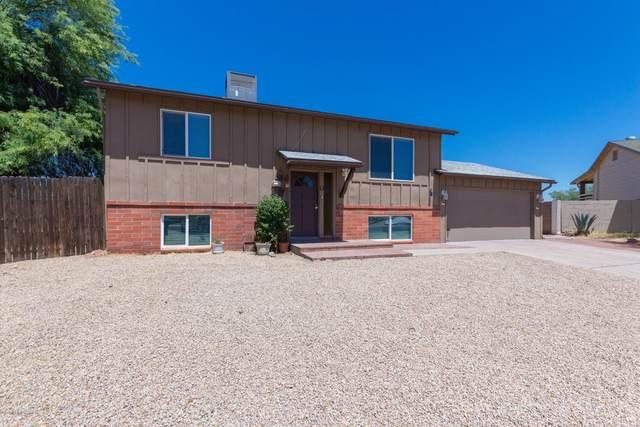 12608 N 38TH Drive, Phoenix, AZ 85029 (MLS #6084175) :: Nate Martinez Team
