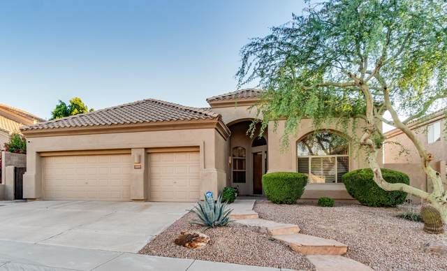 16634 S 3RD Place, Phoenix, AZ 85048 (MLS #6084178) :: Revelation Real Estate
