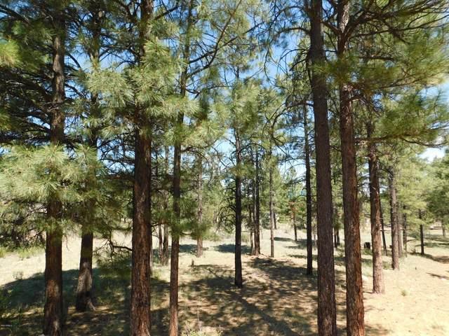 2796 Skyhawk Drive, Overgaard, AZ 85933 (MLS #6084231) :: Klaus Team Real Estate Solutions