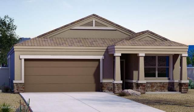 1733 N Westfall Trail, Casa Grande, AZ 85122 (MLS #6084255) :: Yost Realty Group at RE/MAX Casa Grande