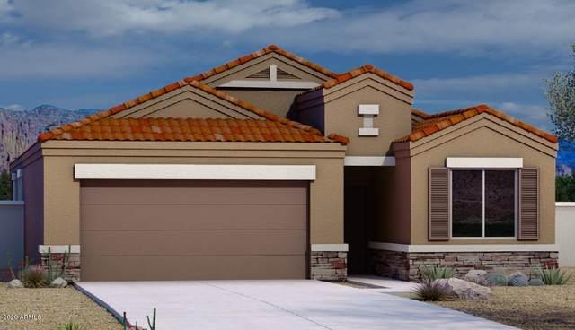 1177 E Tyler Lane, Casa Grande, AZ 85122 (MLS #6084260) :: Yost Realty Group at RE/MAX Casa Grande