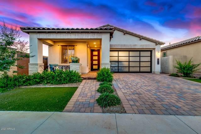 1916 S Huish Drive, Gilbert, AZ 85295 (MLS #6084291) :: My Home Group