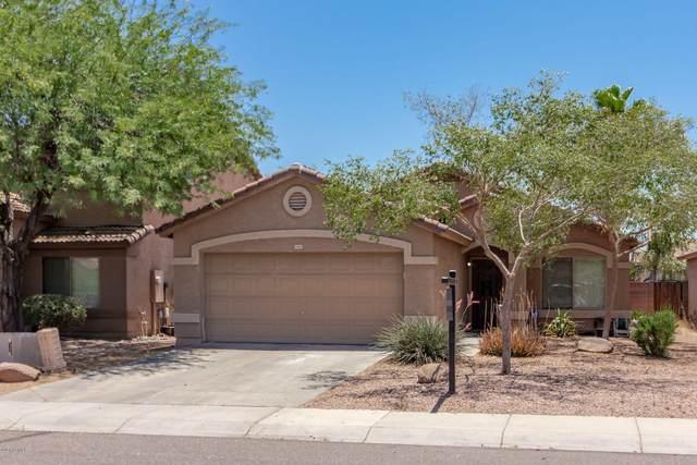 13803 W Berridge Lane, Litchfield Park, AZ 85340 (MLS #6084304) :: Selling AZ Homes Team
