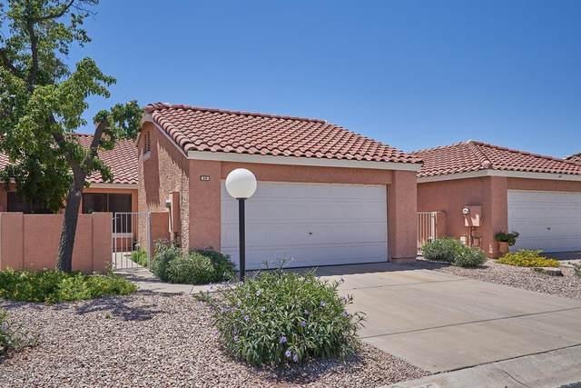 3510 E Hampton Avenue #95, Mesa, AZ 85204 (MLS #6084312) :: Arizona Home Group