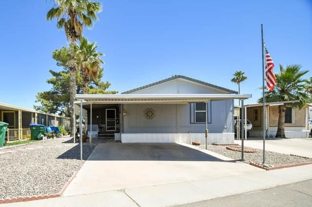 1650 S Arizona Avenue #16, Chandler, AZ 85286 (MLS #6084330) :: Revelation Real Estate