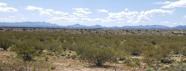 XXX S Bear Road S, Kingman, AZ 86401 (MLS #6084358) :: The Garcia Group