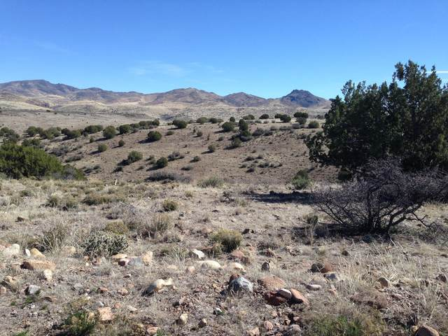 Lot 237 Prairie Schooner, Wikieup, AZ 85360 (MLS #6084392) :: Nate Martinez Team