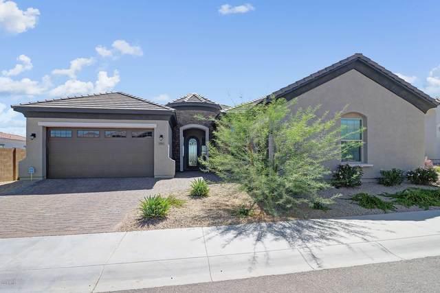7805 S 43RD Place, Phoenix, AZ 85042 (MLS #6084397) :: Klaus Team Real Estate Solutions