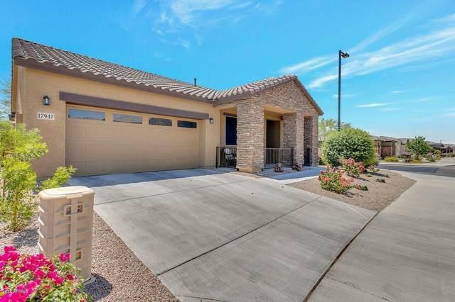 17947 W Fairview Street, Goodyear, AZ 85338 (MLS #6084403) :: Revelation Real Estate
