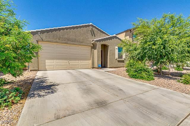 350 W Salali Trail, San Tan Valley, AZ 85140 (MLS #6084416) :: My Home Group