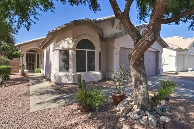 230 W Manor Street, Chandler, AZ 85225 (MLS #6084433) :: Dijkstra & Co.