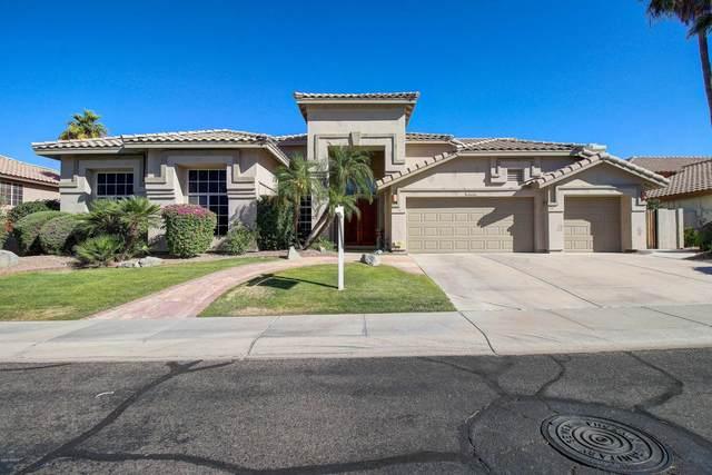 1839 E Briarwood Terrace, Phoenix, AZ 85048 (MLS #6084450) :: Conway Real Estate