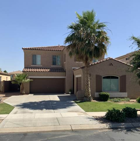 859 E La Costa Place, Chandler, AZ 85249 (MLS #6084484) :: Lifestyle Partners Team