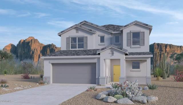 7826 W Kerby Avenue, Phoenix, AZ 85043 (MLS #6084488) :: Lifestyle Partners Team
