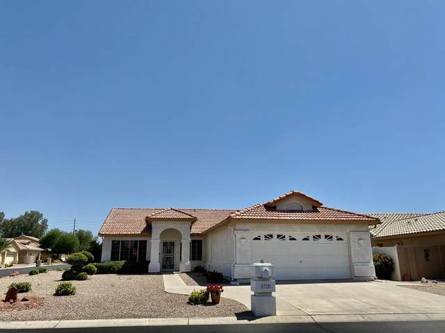 9325 E Coopers Hawk Drive, Sun Lakes, AZ 85248 (MLS #6084496) :: Lux Home Group at  Keller Williams Realty Phoenix