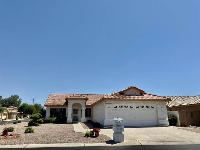 9325 E Coopers Hawk Drive, Sun Lakes, AZ 85248 (MLS #6084496) :: The W Group