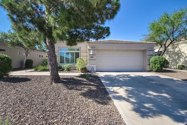 2205 E Constance Way, Phoenix, AZ 85042 (MLS #6084506) :: The Property Partners at eXp Realty