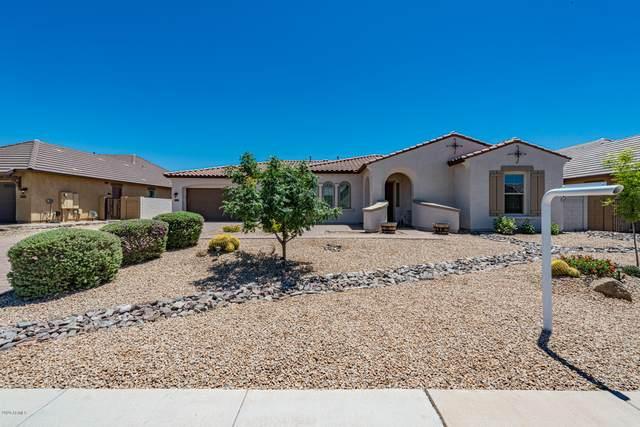 1143 E Via Sicilia, San Tan Valley, AZ 85140 (MLS #6084520) :: My Home Group
