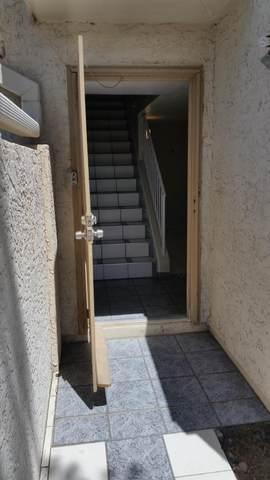 1342 W Emerald Avenue #234, Mesa, AZ 85202 (MLS #6084532) :: The Bill and Cindy Flowers Team