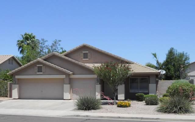 432 W Marlin Place, Chandler, AZ 85286 (MLS #6084558) :: The Laughton Team