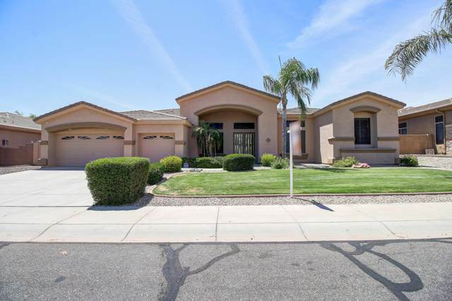 6118 N 132ND Avenue, Litchfield Park, AZ 85340 (MLS #6084567) :: Dijkstra & Co.