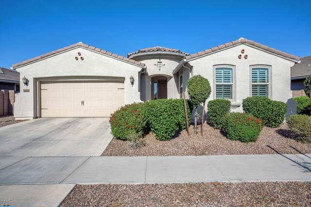 8649 N 89TH Drive, Peoria, AZ 85345 (MLS #6084570) :: Brett Tanner Home Selling Team