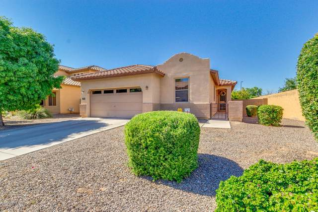 2700 E Vermont Court, Gilbert, AZ 85295 (MLS #6084598) :: The Laughton Team