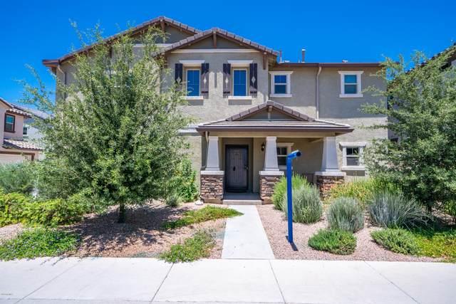 2888 E Binner Drive, Chandler, AZ 85225 (MLS #6084626) :: Lucido Agency