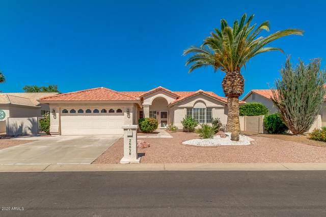 26038 S Saddletree Drive, Sun Lakes, AZ 85248 (MLS #6084640) :: The Property Partners at eXp Realty