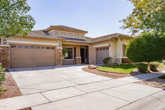 8429 W Northview Avenue, Glendale, AZ 85305 (MLS #6084663) :: Klaus Team Real Estate Solutions