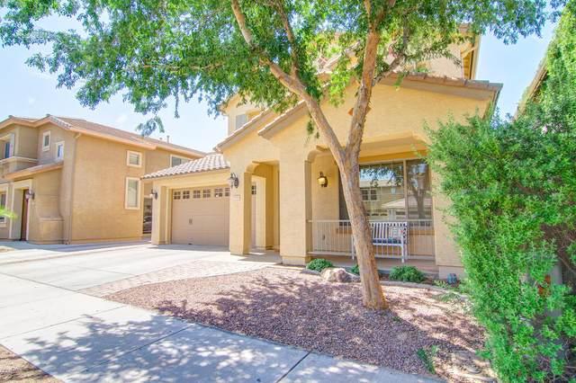 18851 E Swan Drive, Queen Creek, AZ 85142 (MLS #6084673) :: Dijkstra & Co.