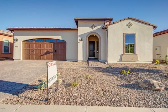 197 E Bergamot Lane, Queen Creek, AZ 85140 (MLS #6084674) :: My Home Group