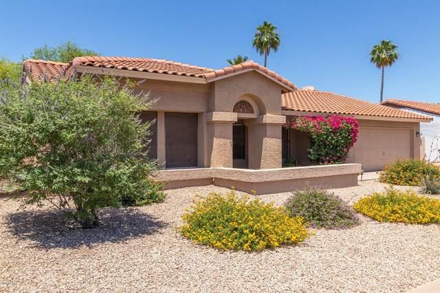 10328 E Becker Lane, Scottsdale, AZ 85260 (MLS #6084681) :: The Laughton Team
