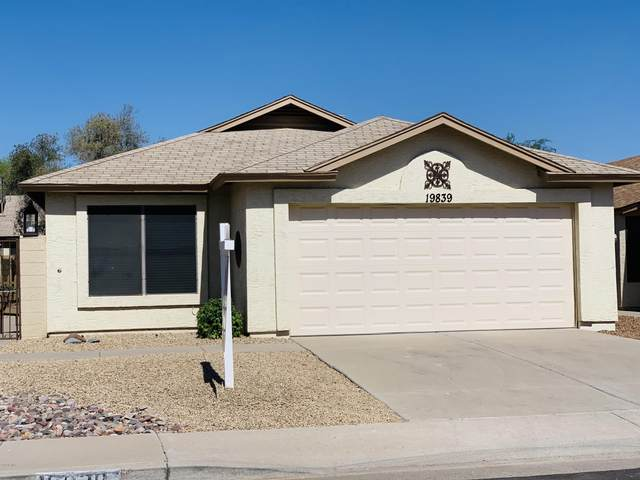 19839 N 46th Avenue, Glendale, AZ 85308 (MLS #6084708) :: Homehelper Consultants
