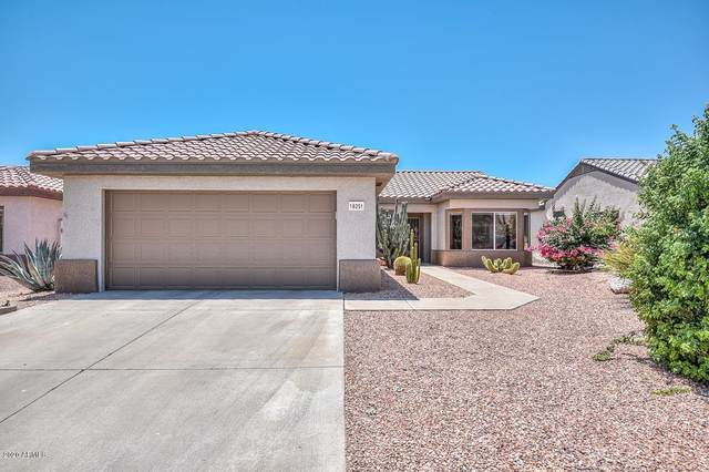 16251 W Talara Way, Surprise, AZ 85374 (MLS #6084716) :: Long Realty West Valley