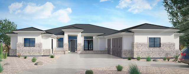 12175 E Mary Katherine Drive, Scottsdale, AZ 85259 (MLS #6084720) :: The Laughton Team