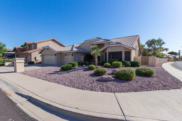 18898 N 69TH Avenue, Glendale, AZ 85308 (MLS #6084738) :: The Laughton Team