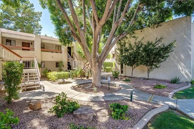 3119 W Cochise Drive #230, Phoenix, AZ 85051 (MLS #6084739) :: Nate Martinez Team