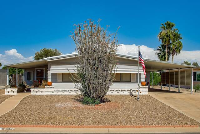25641 S Montana Avenue, Sun Lakes, AZ 85248 (MLS #6084740) :: Lux Home Group at  Keller Williams Realty Phoenix