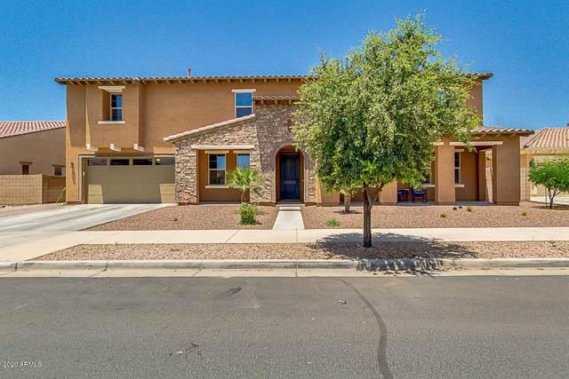 21172 E Sunset Drive, Queen Creek, AZ 85142 (MLS #6084764) :: CANAM Realty Group