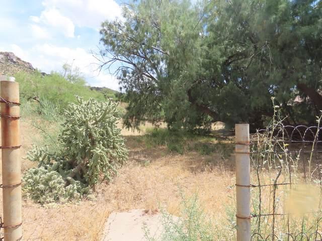 0 W Heiner Drive, Superior, AZ 85173 (MLS #6084768) :: Yost Realty Group at RE/MAX Casa Grande