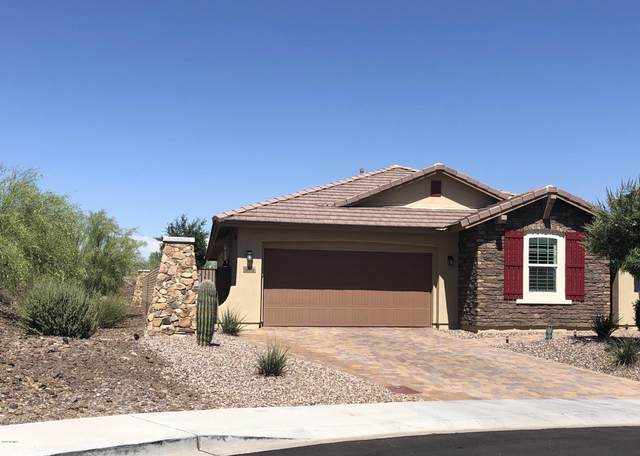 30895 N 137th Avenue, Peoria, AZ 85383 (MLS #6084814) :: Homehelper Consultants