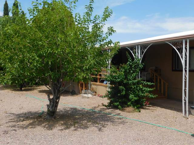 106 E Lynn Way, Queen Valley, AZ 85118 (MLS #6084816) :: Brett Tanner Home Selling Team