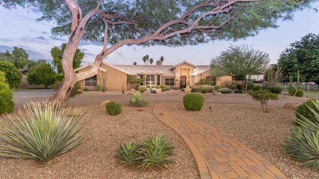 5141 W Cinnabar Avenue, Glendale, AZ 85302 (MLS #6084833) :: Openshaw Real Estate Group in partnership with The Jesse Herfel Real Estate Group