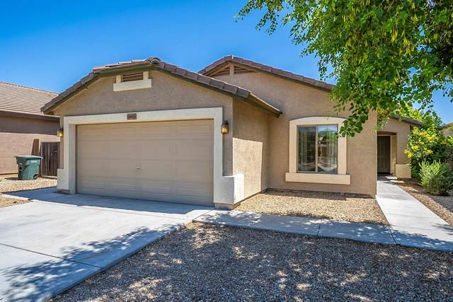 12033 W Louise Court, Sun City, AZ 85373 (MLS #6084900) :: The W Group